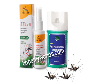 Best Ways to Repellent or Remove Fly & Mosquito from Home