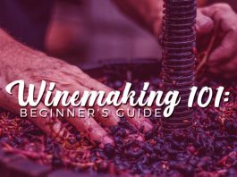 Wine Making 101