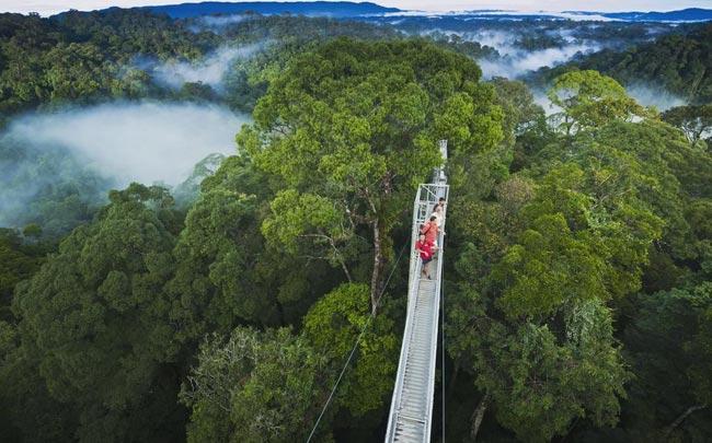 Borneo's Lost Worlds