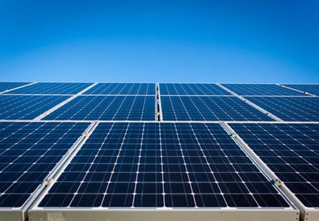 Invest in renewables