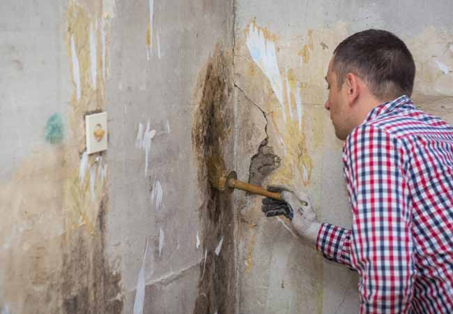 Top 9 Effective Tips for Mold Removal