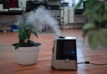 purchasing the air purifier