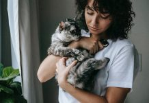 Cat Nutrition and Grooming Tips To Keep Your Feline Healthy