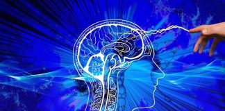 Best Nootropic Supplements to Take